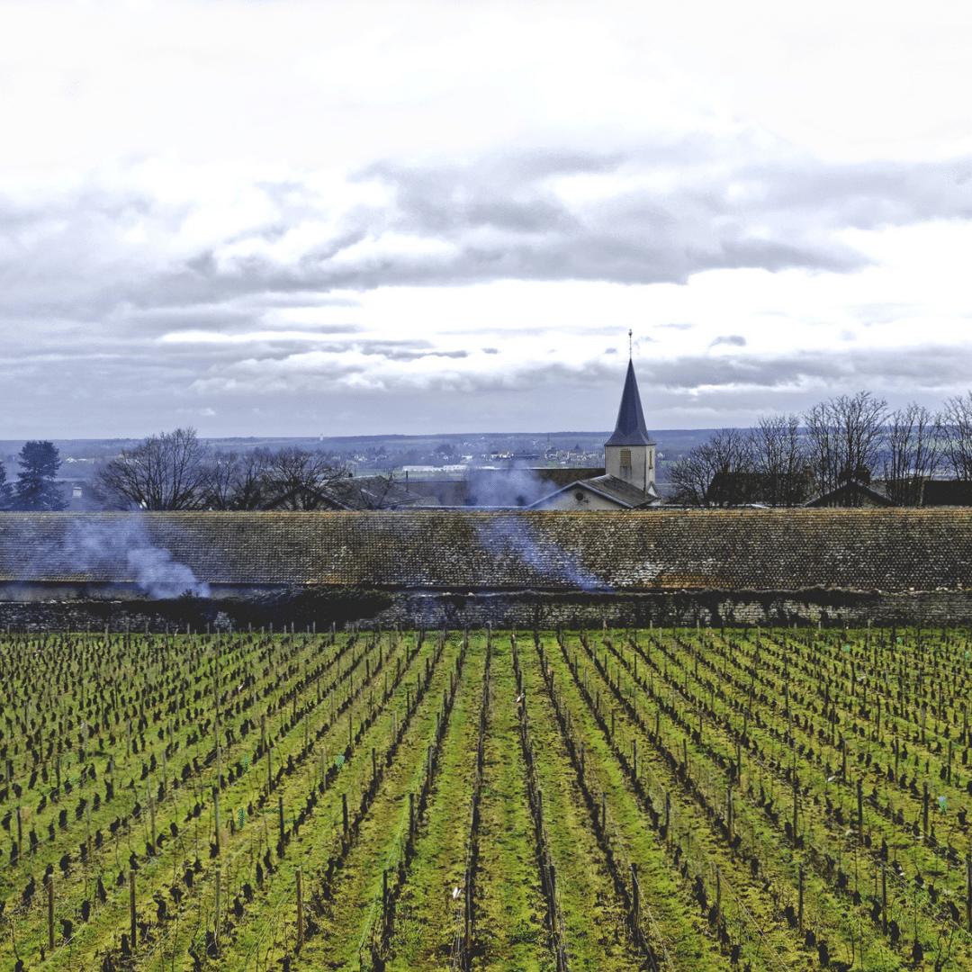 Les Héritiers Saint Genys